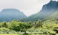 6 Roundtrips from Charlotte to Hawaii: $30 Each
