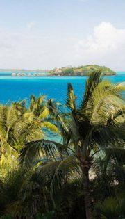 Hacking A Honeymoon In Bora Bora