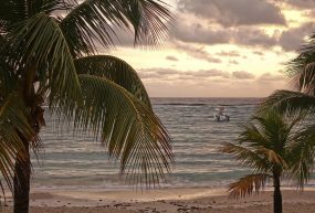 78% Off Christmas Vacation in Jamaica